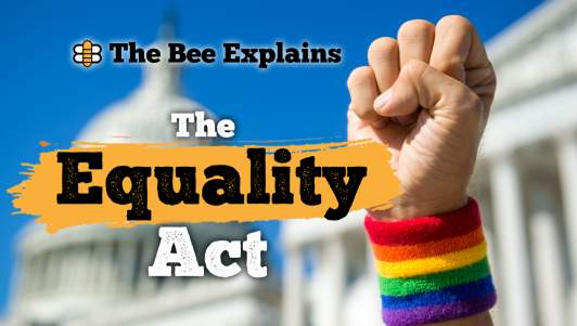 The Bee Explains: The Equality Act